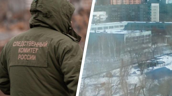 «Проезжал мимо на автомобиле»: следователи начали проверку после избиения детей из-за сломанного снеговика