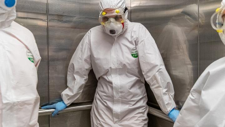 В Новосибирской области зафиксирован резкий всплеск заболевших коронавирусом за сутки (такого еще не было)