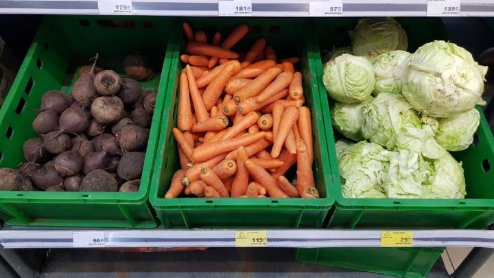В Волгограде и области продолжает дорожать морковь