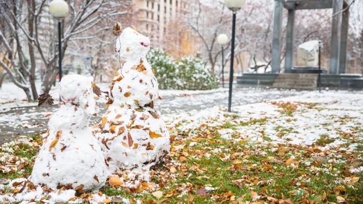 Синоптики ждут морозы до -10 градусов в первой декаде октября в Новосибирске