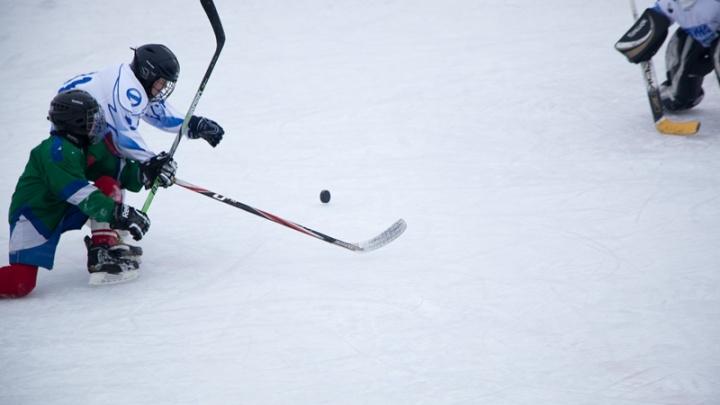 Губернатор Александр Цыбульский ответил, построят ли в Каргополе хоккейный корт