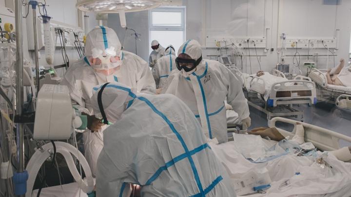 На Кубани в тяжелом состоянии на ИВЛ находятся более 100 человек с ковидом