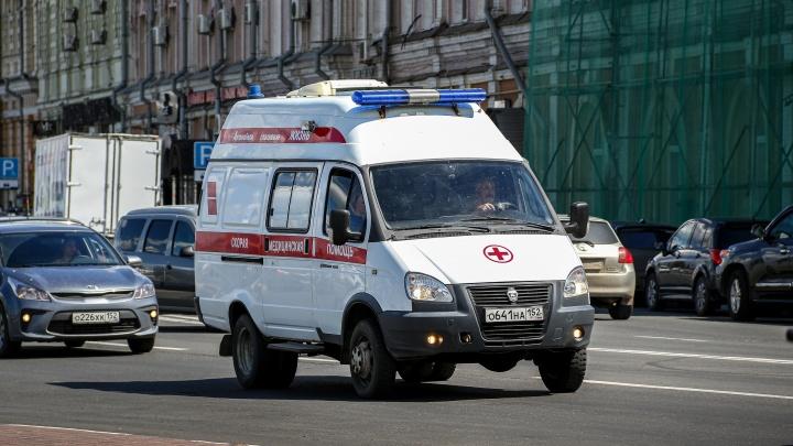 Два человека погибли в аварии, протаранив дерево под Шатками. За рулем была пьяная женщина