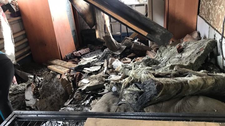 В Кемерово в приюте для собак взорвался газовый баллон. Пострадали хозяйка и животные