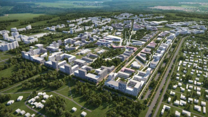 Микрорайон строят — щепки летят: обречен ли лес на Волгоградской