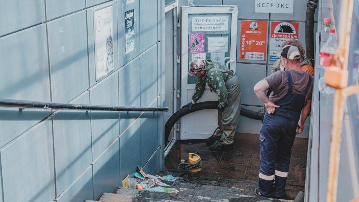 В Перми до потолка затопило магазины зоотоваров и игрушек