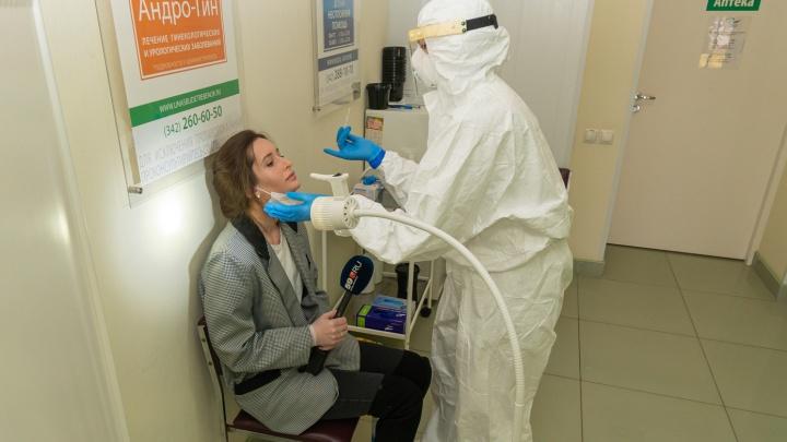 На массовые мероприятия теперь только с вакциной или анализами: где в Перми сдать ПЦР-тест на коронавирус