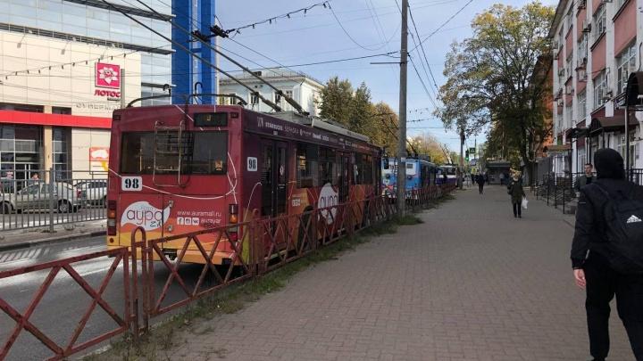 «Запутались штанги»: в Ярославле встали троллейбусы