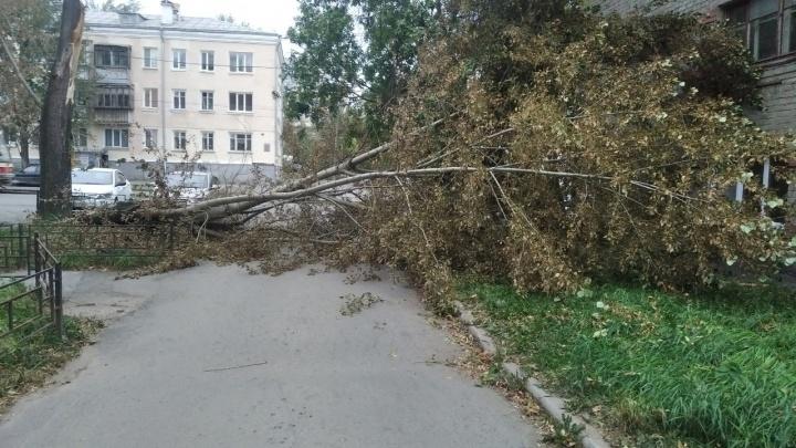 Как Екатеринбург пережил внезапный ураган: 10 самых эпичных фотографий