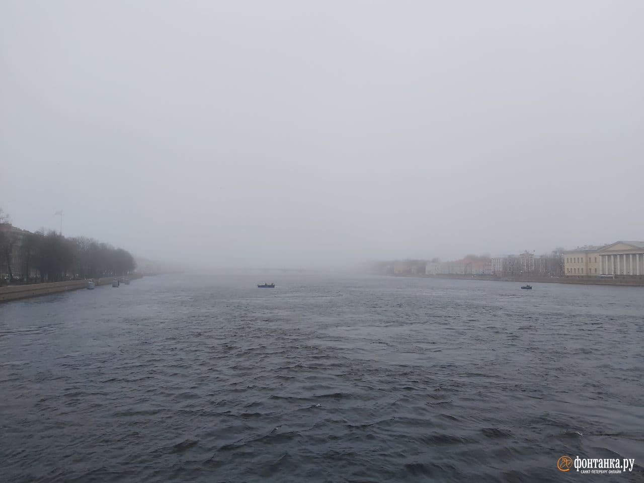 автор фото Николай Кудин / «Фонтанка.ру»