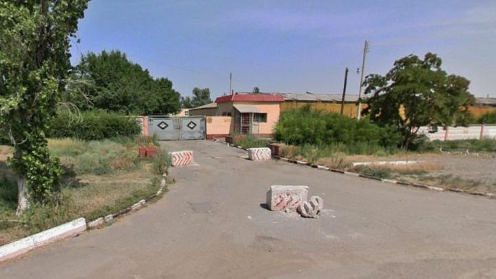 В Волгограде продадут с молотка знаменитую «дикую дивизию»