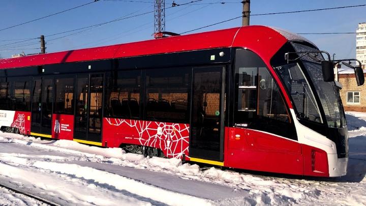 В Пермь привезли все 15 трамваев модели «Львенок»