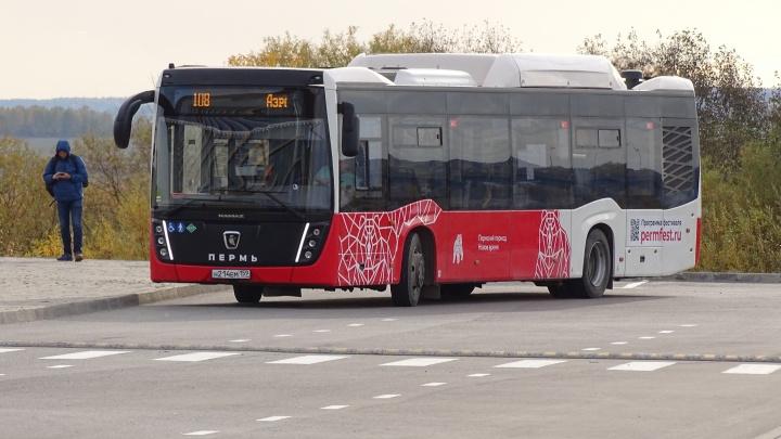 Власти определились с новой стоимостью проезда на автобусе до аэропорта Большое Савино