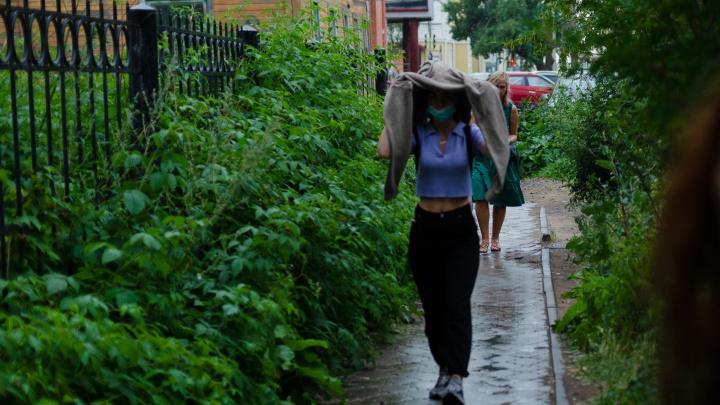 Готовьте зонтики: в Архангельскую область идут дожди