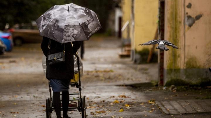 Приготовьте зонты и куртки: синоптики предупредили о резком ухудшении погоды в Центральной России