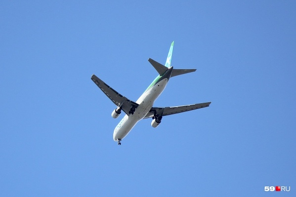 Самолеты хотят запустить в восемь городов Узбекистана