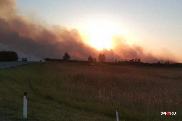 Накануне площадь пожара составляла 60 гектаров, окончательные данные озвучат после полного тушения