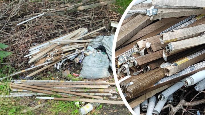 Опасны для окружающей среды и людей: в Ярославле жители нашли незаконную свалку ртутных ламп