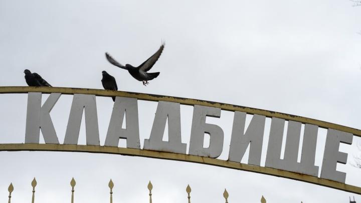 Первый частный крематорий откроется в Ростове зимой. Его строит омская фирма