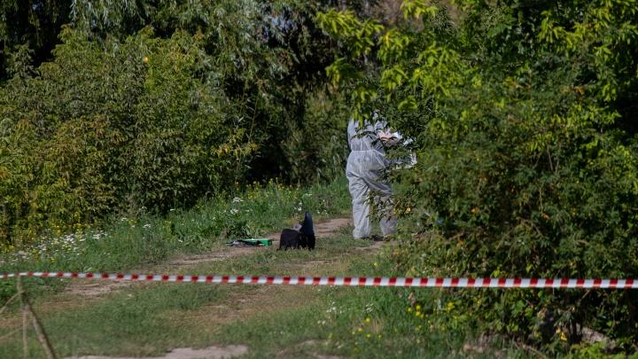 СКР: тело Насти Муравьёвой нашли в пакете на берегу озера