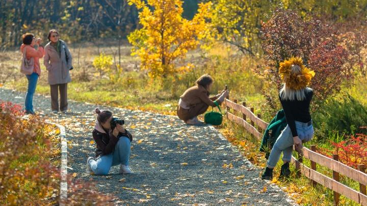 Стали известны точные сроки осенних каникул в Тольятти