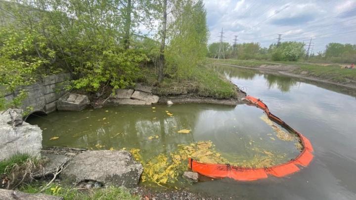 Боны остановили масляные пятна на реке Тёплой. Откуда взялись нефтепродукты, выясняют следователи