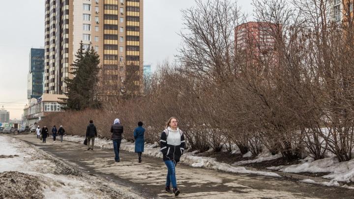 К Новосибирску приближается холодный атмосферный фронт: как изменится погода