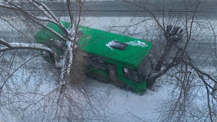 На Вторчермете автобус протаранил легковушку и дерево, пострадала одна из пассажирок
