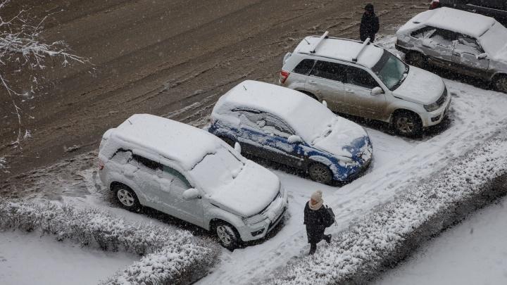 Неизвестный меценат со 140миллионами рублей, аномальный снегопад и рождение четверни: коротко о главных новостях Волгограда
