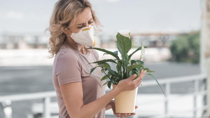 «Июль. Открыть окно и плакать»: как спастись от приступов аллергии, дыма лесных пожаров и духоты