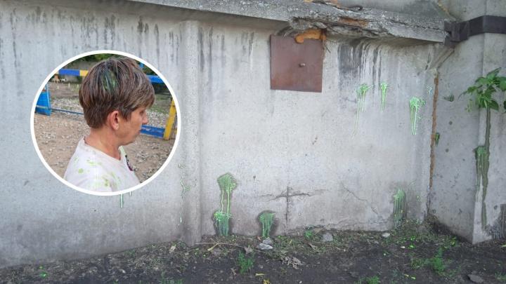 В Омске собачий приют обстреляли из пейнтбольных ружей