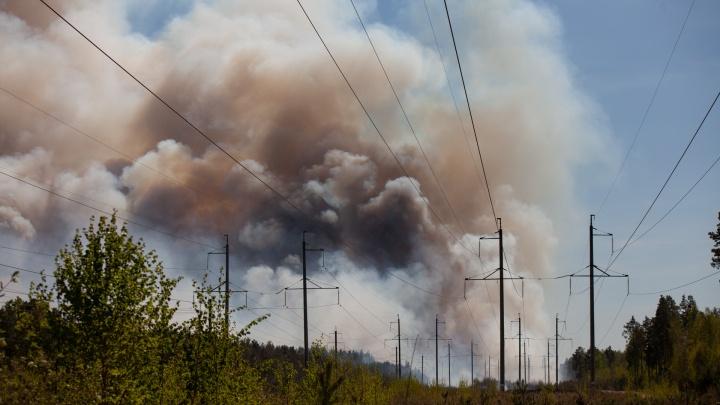 Тюменцев, нарушивших противопожарный режим, оштрафовали в общей сложности почти на 4 миллиона рублей