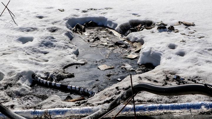 Стоки от полигонов под Дзержинском продолжают загрязнять близлежащие водоемы