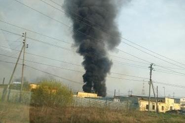 Огонь охватил площадь в один гектар