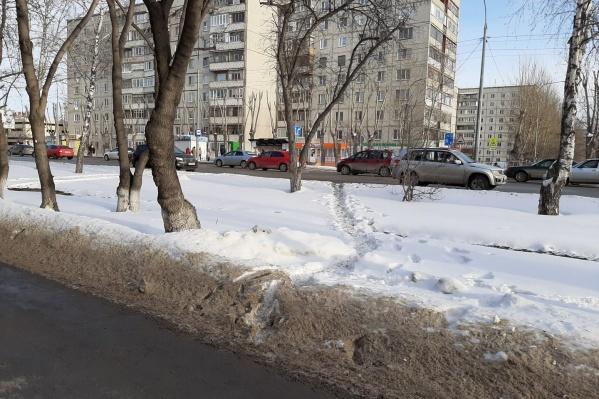 После того как убрали забор на Червишевском тракте, пассажиры автобусов начали перебегать многополосную дорогу в неположенном месте, чтобы сократить путь до остановки
