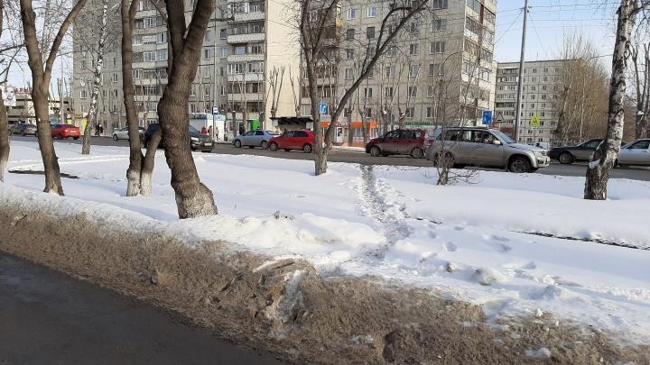 Тюменский депутат попросил мэрию поставить забор вдоль Червишевского тракта