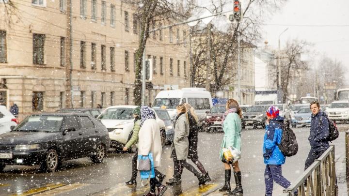 Впереди дожди и мокрый снег: метеорологи сообщили об окончании бабьего лета в Ярославле
