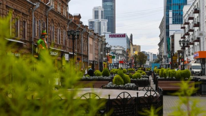 Против «московской» иллюминации и фонтанов: чего хотят горожане от реновации улицы Вайнера