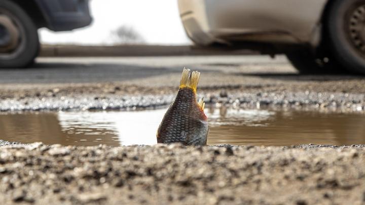 Измеряли карасиком: на каких дорогах Самары самые глубокие ямы