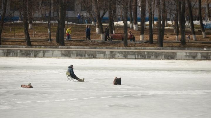 Перепись отчаянных: рыбаки по всему Екатеринбургу выходят на лед, несмотря на +19 градусов