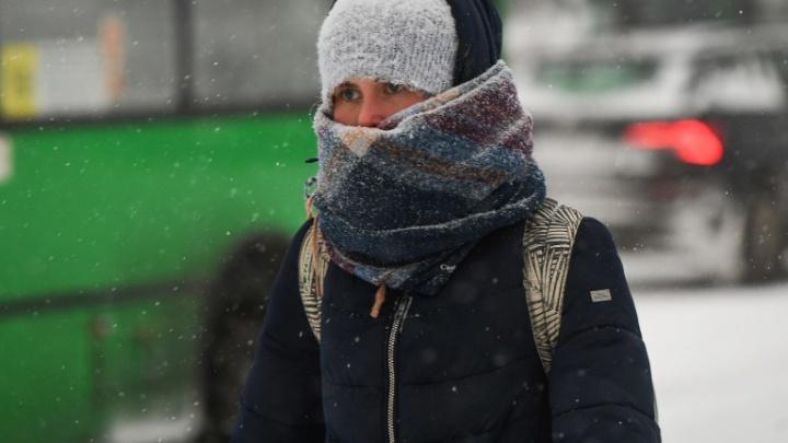 Метели и сильные снегопады накроют Свердловскую область в выходные