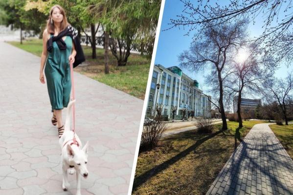 Одна из самых популярных у собачников зеленых зон в центре города может оказаться для них под запретом
