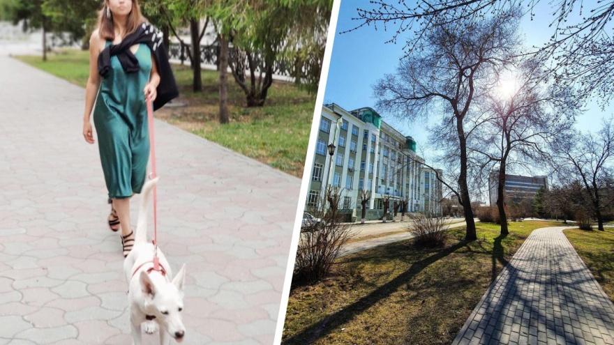 «53 тысячи собак и одна площадка для выгула». Как мэрия Новосибирска запретила гулять с собаками