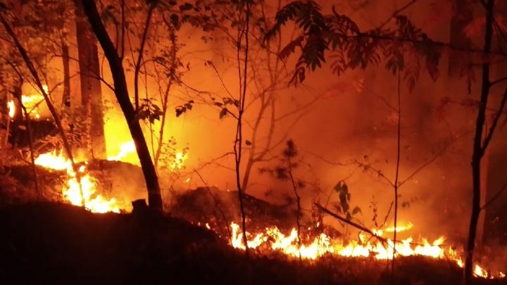 В Челябинской области за сутки потушили рекордное число природных пожаров