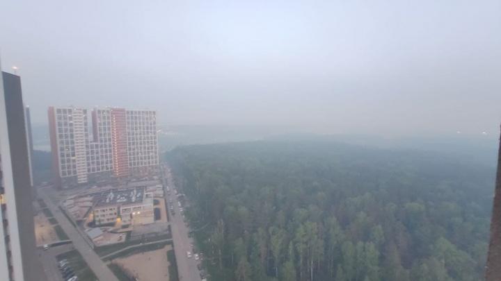 «Дышать просто невозможно!» Екатеринбуржцы жалуются на едкий смог, накрывший город. Откуда он взялся?