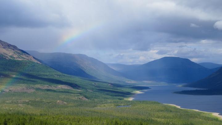 Тайга — закон, медведь — хозяин: как осваивают деньги в крупнейшем заповеднике России на Таймыре