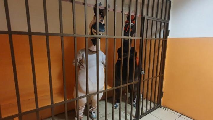 В Сочи арестовали на пять суток аниматоров в костюмах лошадей за приставание к прохожим