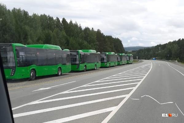 Зеленые автобусы, направляющиеся в сторону Екатеринбурга, сфотографировали под Пермью