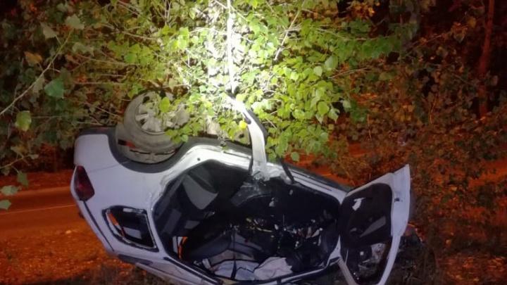 Погибли на месте: в Самарской области «Калина» влетела в дерево