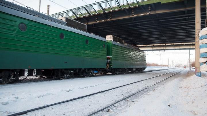 Пассажирский поезд насмерть сбил 63-летнюю женщину под Заводоуковском